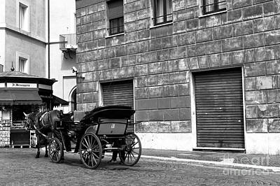 Photograph - Carriage In Piazza Navona by John Rizzuto
