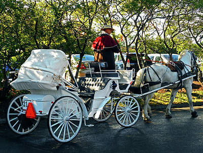 Photograph - Carriage Ride 2 by Ron Kandt
