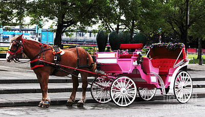 Photograph - Carriage Ride In Montreal by John Rizzuto