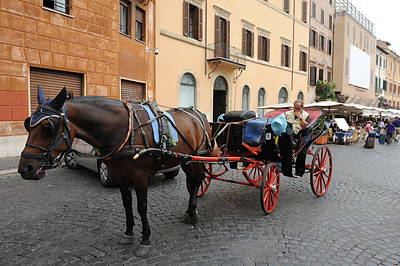 Photograph - Carriage Stop, Rome, 2010. by John Jacquemain