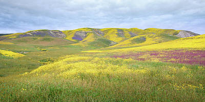 Photograph - Carrizo Plain - Prismatic Pastures by Alexander Kunz