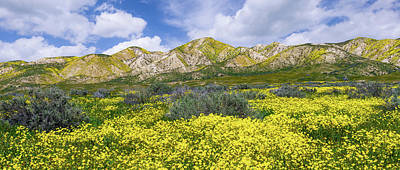 Photograph - Carrizo Spring by Bjorn Burton