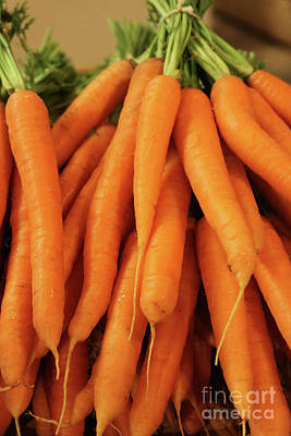 Photograph - Carrots #2 by PJ Boylan