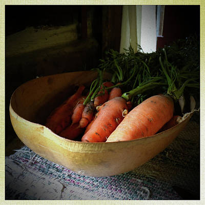 Photograph - Carrots From The Garden by Scott Kingery