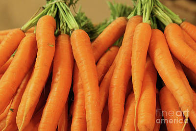 Photograph - Carrots by PJ Boylan