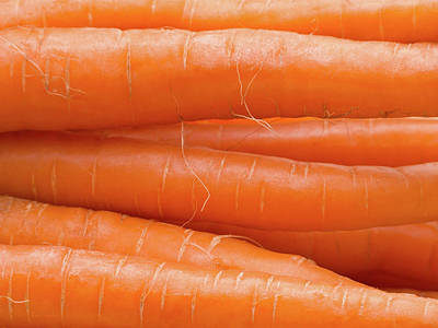 Photograph - Carrots by Wim Lanclus