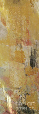 Photograph - Cartagena Abstract 1 by Randall Weidner
