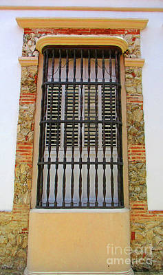 Photograph - Cartagena Windows 14 by Randall Weidner