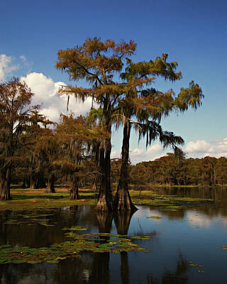 Photograph - Carter Lake Of Caddo by Lana Trussell