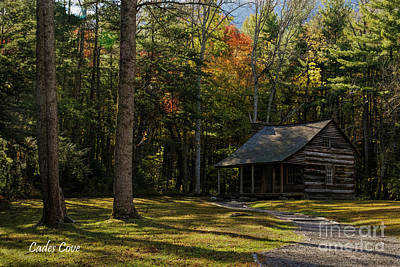 Photograph - Carter Shields Cabin by Barbara Bowen