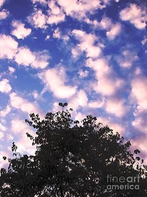 Photograph - Cartoon Clouds by Melissa Stoudt