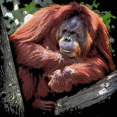 Orangutan Painting - Cartoon Comic Style Orangutan Sitting In Tree Fork by Elaine Plesser