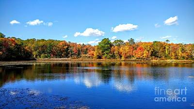 Photograph - Carver Pond Bridgewater Ma by Rusty Green