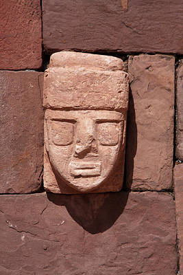 Photograph - Carved Stone Head In The Sunken Temple by Aidan Moran