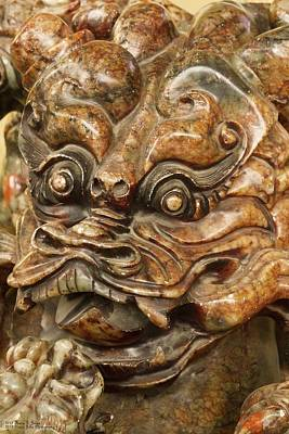 Photograph - Carvings In Jade - 3 - A Dragon's Face  by Hany J