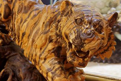 Photograph - Carvings In Jade - 5 - A Siberian Tiger by Hany J