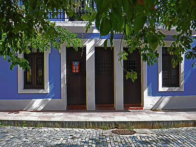 Photograph - Casa Azul by Guillermo Rodriguez