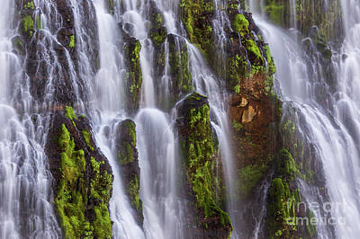 Photograph - Cascade by Anthony Michael Bonafede