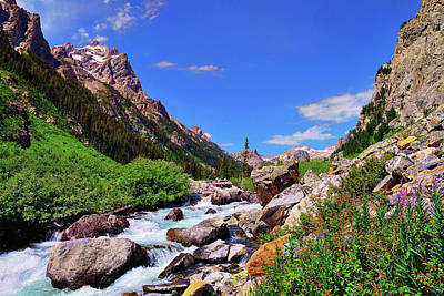 Photograph - Cascade Canyon by Greg Norrell