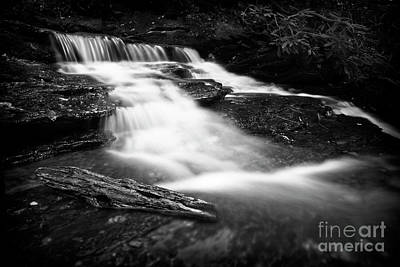 Photograph - Cascade Creek 1 by Patrick M Lynch
