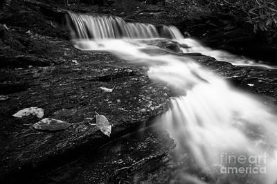 Photograph - Cascade Creek 2 by Patrick M Lynch