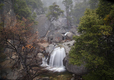 Yosemite Np Photograph - Cascade Creek by Beth Young