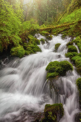 Photograph - Cascade Dreaming by Darren White