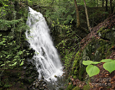 Photograph - Cascade Falls No. 3, Farmington, Maine #30385 by John Bald
