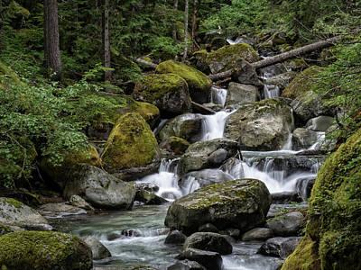 Photograph - Cascade In The Rainforest by Gary Karlsen