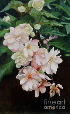 Painting - Cascade Of Begonias  by Margit Sampogna