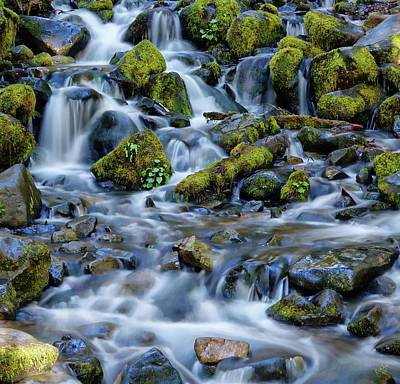 Photograph - Cascade Of Many Waters by Rick Lawler