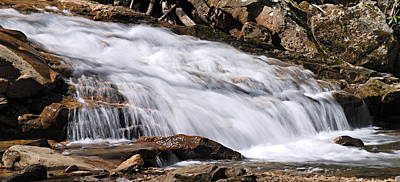 Photograph - Cascade On Cucumber Run by Larry Ricker