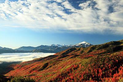 Photograph - Cascade Reds by Johnny Adolphson