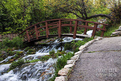 Cascade Springs Bridge Art Print