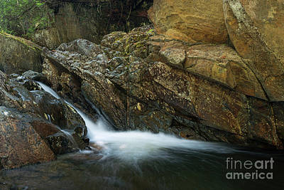 Photograph - Cascade Stream Gorge by Sharon Seaward