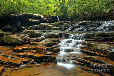 Photograph - Cascades At Ohiopyle by Adam Jewell