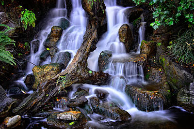 Photograph - Cascades by Harry Spitz