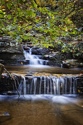 Photograph - Cascading by Debra and Dave Vanderlaan