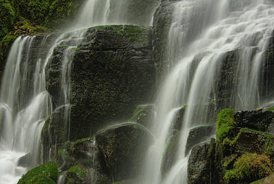 Photograph - Cascading Falls by Don Schwartz