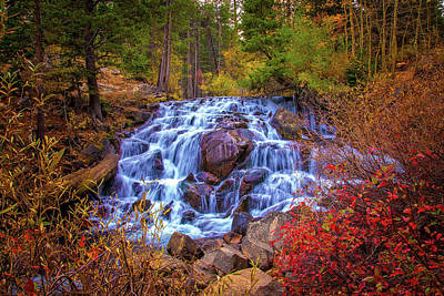 Photograph - Cascading Falls In The Sierra by Lynn Bauer
