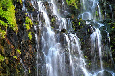 Photograph - Cascading Springs Snake River Canyon by Ed  Riche