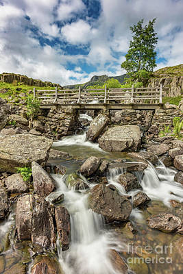 Photograph - Cascading Stream by Adrian Evans