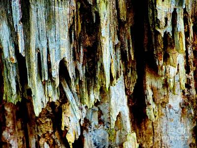 Photograph - Cascading Wood by Tim Townsend