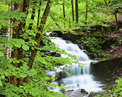 Photograph - Cascading Woodland Brook by Alan L Graham