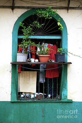 Photograph - Casco Viejo Window Scene by John Rizzuto
