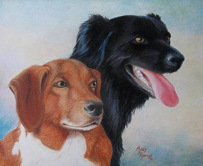 Drawing - Casey And Charlie by Mary Rogers