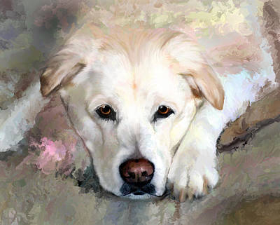 Retrievers Digital Art - Casey Gone But Not Forgotten by Elizabeth Murphy
