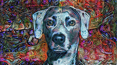 Cash The Blue Lacy Dog Art Print