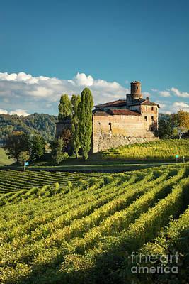 Grapevines Photograph - Castello Della Volta - Barolo by Brian Jannsen