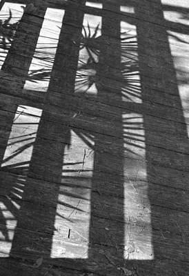 Photograph - Casting Shadows by rd Erickson